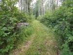 Hanen Trail